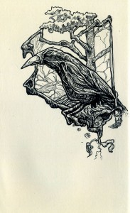 crow (781x1280)
