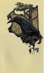 crow-01-01 (781x1280)